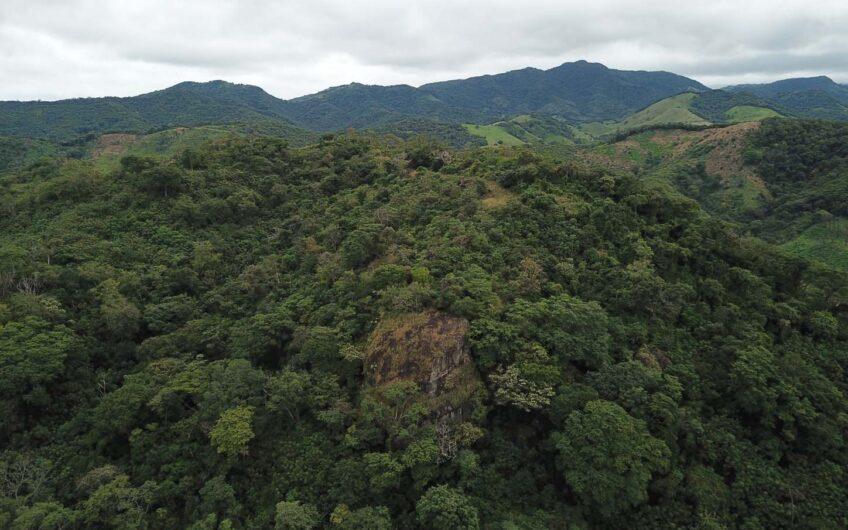 Hacienda Santa Teresa, Cañas Guanacaste